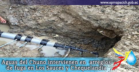 Aguas del Chuno intervienen en arreglos de fugas en Los Sauces y Chequelandia